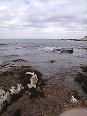 Image617