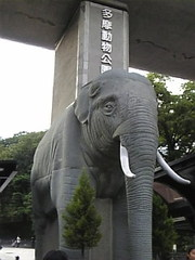 Image968